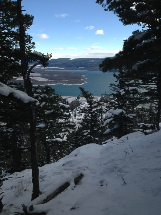Peek of Upper Waterton Lake through the trees