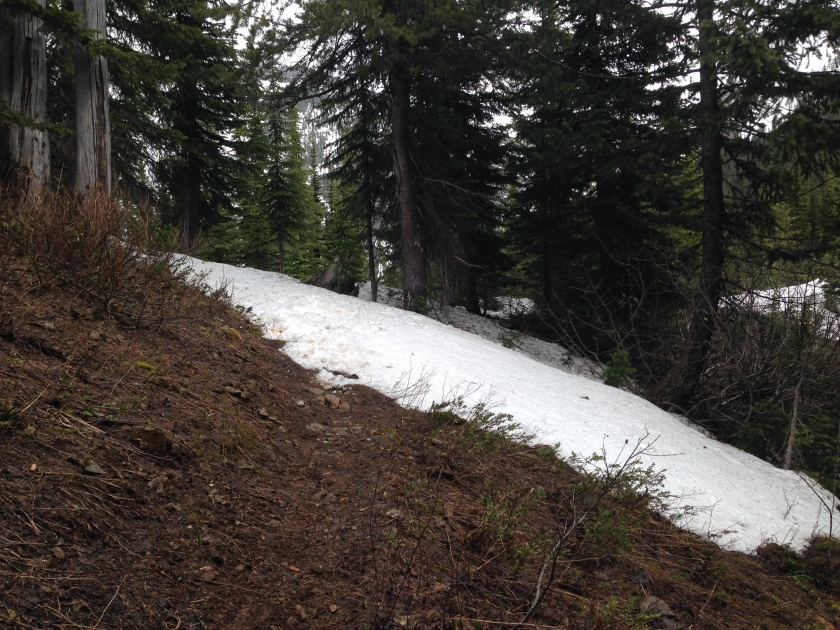 All of a sudden we lost the trail to snow