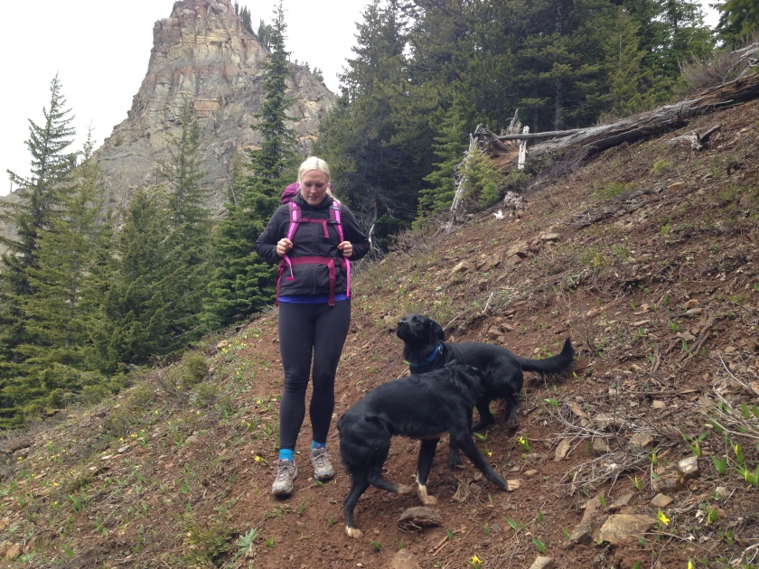 Fun and challenging hike with the dogs