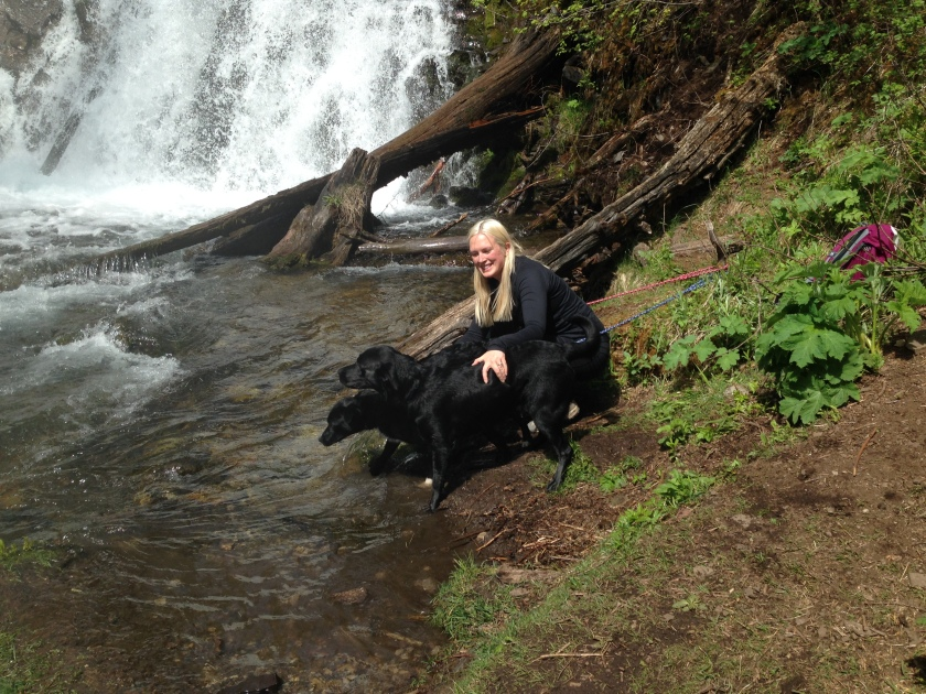 At the falls with my doggies!